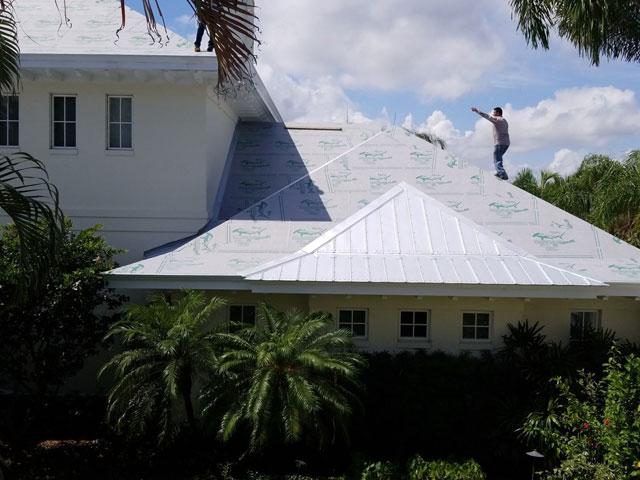 Sharkskin Ultra SA on Metal Florida